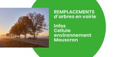 INFORMATIONS sur les REMPLACEMENTS d'arbres en voirie à Mouscron.
