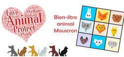 Mouscron : le bien-être animal - BEA