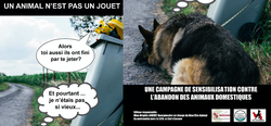 Présentation de la campagne anti-abandon des animaux domestiques en période de vacances 2021