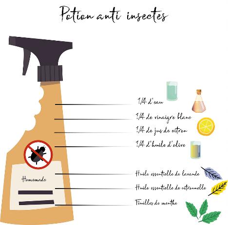 recette pour un anti-mouche - cheval