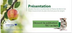 Publication TEC ! plan d'action à découvrir