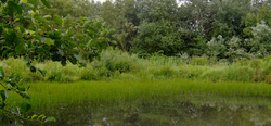 Save the date - Cap Nature te Moeskroen